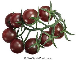 senderos, tov, tondo, grupo, cima, nero, tomates