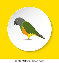 Senegal parrot icon in flat style