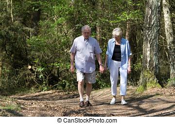 senior összekapcsol, gyalogló
