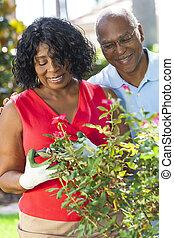 Senior African American Man Woman Couple Gardening