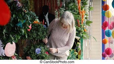Senior Business Owner Mending her Plants - A senior small...