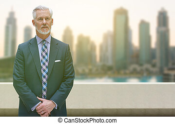 Senior businessman in front of the big city