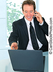 Senior Businessman Pointing At Laptop Screen