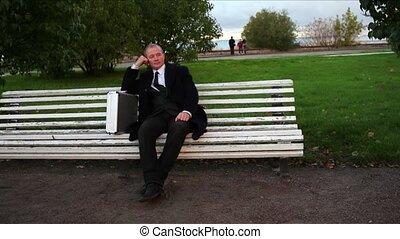 Senior Businessman Relaxing in Park