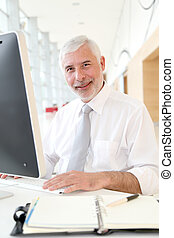 Senior businessman working in office