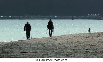 Senior couple and their dog on the beach walking