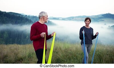 Senior couple doing exercise with rubber bands on meadow in...
