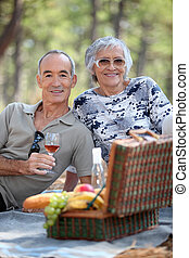Senior couple enjoying a picnic