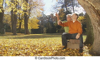 happy senior couple sitting on bench under tree in park in autumn part I of II