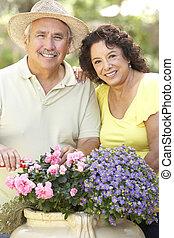 Senior Couple Gardening Together