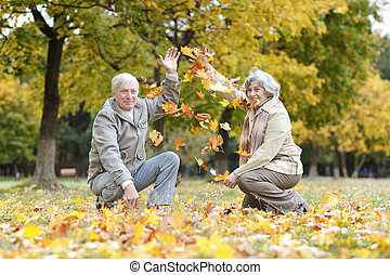 couple have fun - Senior couple have fun throwing leaves in...