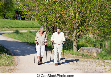 Senior Couple Hiking In Forest