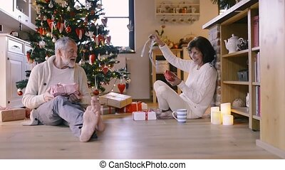 Senior couple in front of Christmas tree with presents.