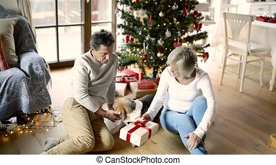 Senior couple in front of Christmas tree with dog and presents.