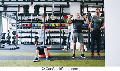 Senior couple in gym with personal trainer doing various...