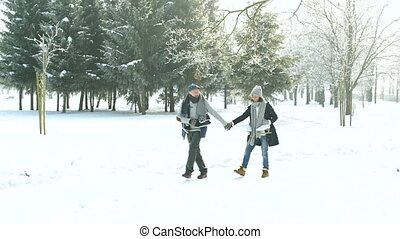 Senior couple in sunny winter nature going ice skating.