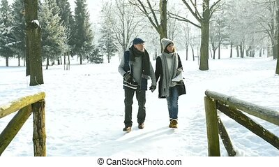 Senior couple in sunny winter nature going ice skating. -...