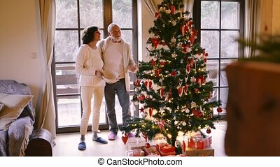 Senior couple looking at Christmas tree at home. Feeling...