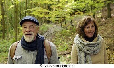 Senior couple on a walk in autumn forest.