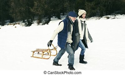 Senior couple on a walk pulling sledge, winter day. - ...