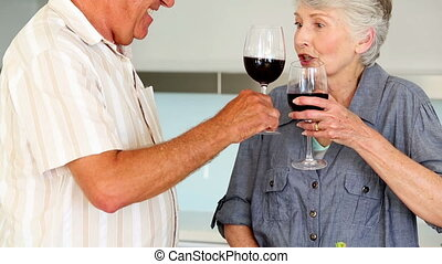 Senior couple preparing a healthy s