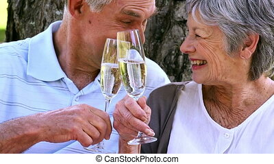 Senior couple relaxing in the park together having champagne...