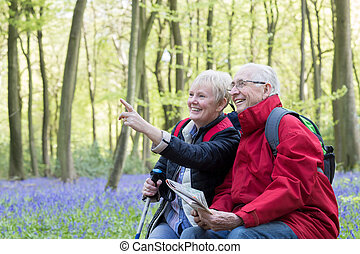 Senior Couple Resting On Walk Through Bluebell Wood