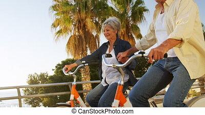 Senior couple riding bicycle at promenade 4k - Senior couple...