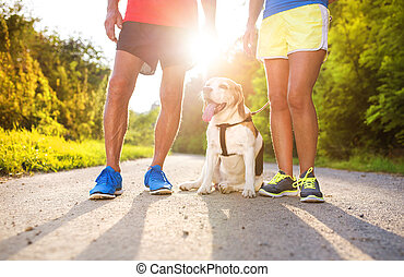 Senior couple running - Active seniors getting ready for a ...