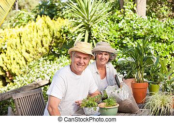 Senior couple sitting in their garden