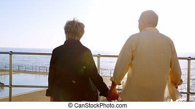 Senior couple standing at promenade on a sunny day 4k - Rear...