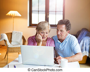 Senior couple - Happy senior couple working on laptop in...