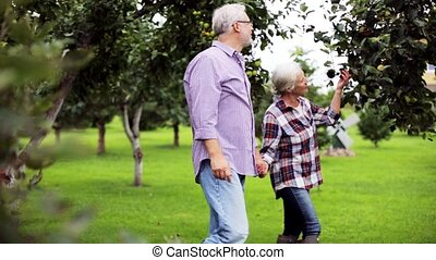 senior couple walking along summer garden