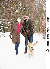 Senior Couple Walking Dog Through Snowy Woodland