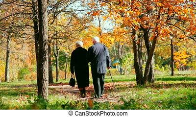 Senior couple walking arm in arm in autumn park