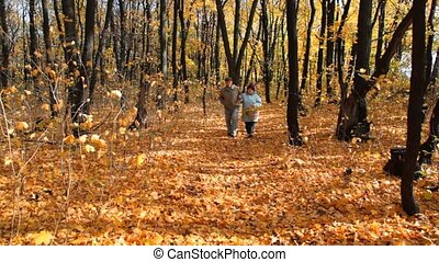 senior couple with basket walks in park