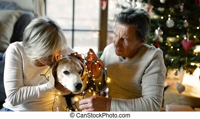 Senior couple with dog in front of Christmas tree