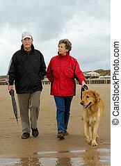 Senior couple with dog on a beach walk