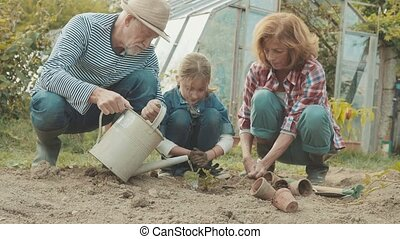 Senior couple with grandaughter gardening in the backyard...