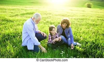 Senior couple with granddaughter sitting on grass outside in...