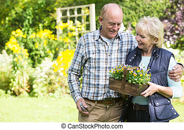 Senior Couple Working In Garden Together