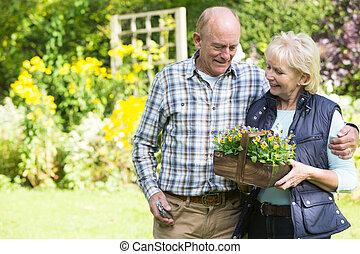 Senior Couple Working In Garden Together