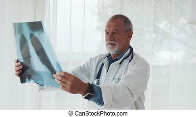 Senior doctor looking at chest x-ray in office.