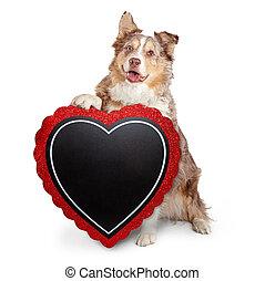 Senior Dog Carrying Blank Heart Sign