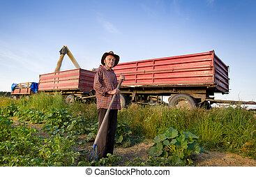 Senior farmer at corn harvest