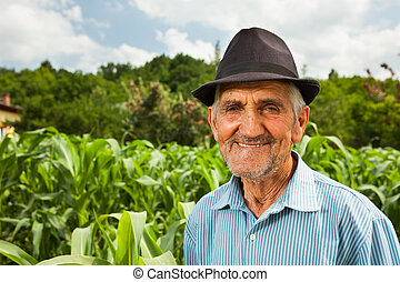Senior farmer with a corn field in the background - Portrait...