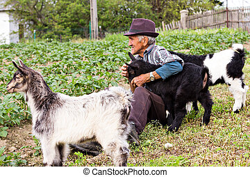 Senior farmer with three baby goat