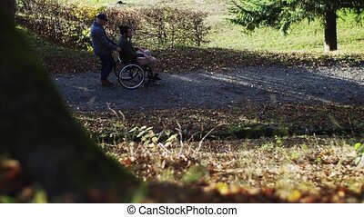 A senior father and his son in wheelchair on a walk in nature, talking.