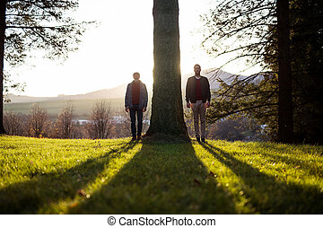 Senior father and his son standing by tree at sunset, ...