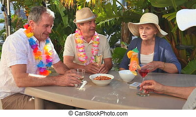 Senior friends taking an aperitif